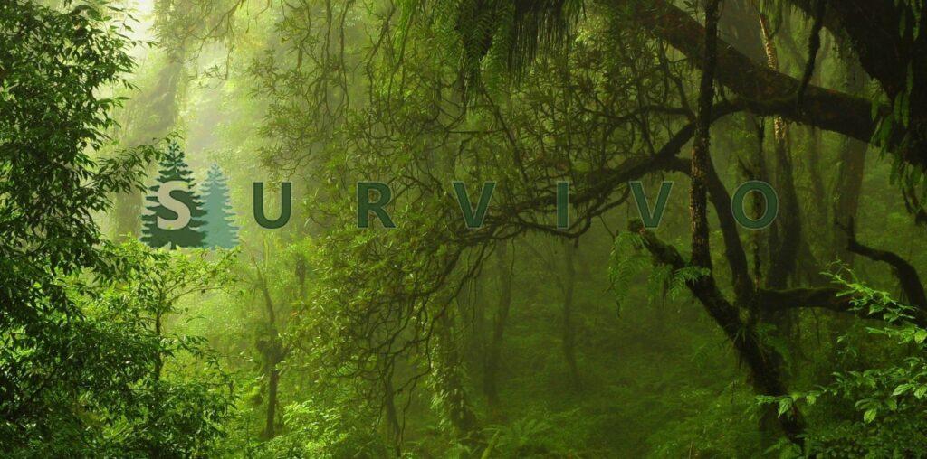 Outdoor Shop Schweiz - Survival, Camping, Wandern, Freizeit Sport Produkte-Shop Schweiz