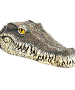 Krokodil Kopf, ferngesteuert, Schweiz