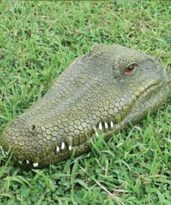 ferngesteuerter Alligator, Schweiz