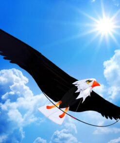 Kinder Drache, Spielzeug, Drache 3d Adler, Lenkdrache kaufen Schweiz