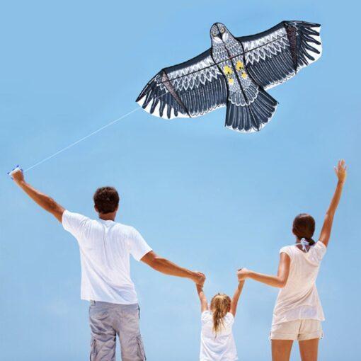 Kinderdrachen, Kite Adler 3d, Kinder Outdoor Spielzeug